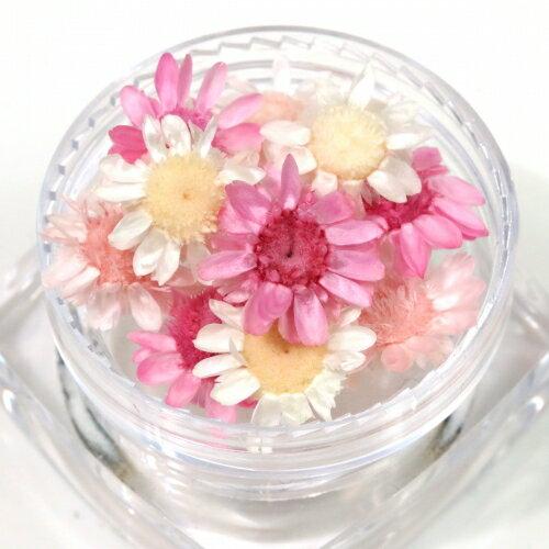 【ドライフラワー】12輪 3色ミックス スターフラワー 《スプリング》 [小花,プリザーブドフラワー,花材,flower,ピンク,もも,ホワイト]