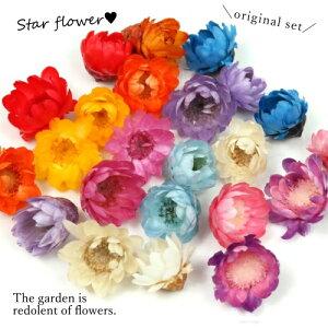 【福袋】6色36輪カラーはお任せ(^^♪つぼみが可愛いスターフラワーサイズmixセット小花プリザーブドフラワー花材flowerドライフラワー封入プチ