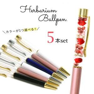 【ハーバリウムペン】超お買い得・まとめ買い 同色5本セット ハーバリウムボールペン本体のみ《選べる6色》[ボールペン,福袋,ドライフラワー]