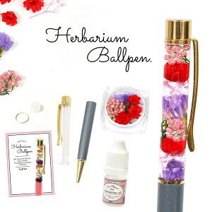 【手作りキット】ハーバリウムペン パッションカラーが魅惑的♪ 作り方説明書付き《パッション》プリザーブドフラワー ドライフラワー ボールペン 母の日 プレゼント ギフト