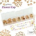 【基本金具】7種 花座ビーズキャップ オリジナルスターターセット《きれいめゴールド》[菊座 座金 基礎 花 フラワー …