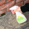 乳酸苔藓卸妆 (用于户外) 300 毫升、 MOSS-Moss-headstone-wall-removal-entrance-tiles-Moss 洗涤助剂,多雨的季节