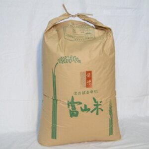 在庫処分30%OFF【送料無料】【平成29年産】富山県産 赤米(古代米) / 30kg(業務用紙袋) [生産者直販のおいしい健康食]