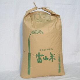 新米!<令和2年>【送料無料】富山県産 コシヒカリ / 玄米30kg(業務用紙袋) [生産者直販のおいしい健康食]