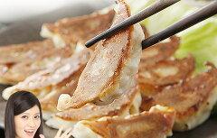 【クール便送料別途】人気商品!国産野菜を使ったヘルシー菜食餃子業務用50個rtベジタリアン餃子、マクロビ、ダイエット