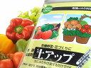 【家庭菜園】【土壌改良】混ぜるだけでホコホコ土に!?天然素材100% 有機JAS対応資材「土アップ」(土壌菌粉体)(1kg)