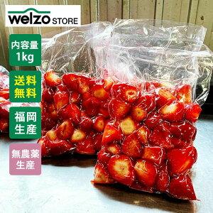 【送料無料】福岡県産 冷凍いちご あまおう 1kg(500g×2袋) 有機JAS認証 国産 九州産【代引不可】