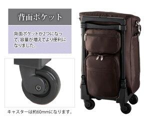SWANYスワニーウォーキングバッグジップ3L21機内持ち込み可能サイズ1年保証付D-116-L21