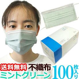 【即日発送 即納】マスク 在庫あり GPT 使い捨てマスク8 不織布【 100枚 】薄い 緑色 ミントグリーン 3層構造 不織布マスク ますく 送料無料 箱 50枚入×2(gu1a761)【セット】