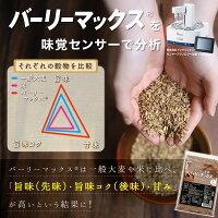 GronG(グロング)大麦スーパー大麦バーリーマックス900g食物繊維押麦もち麦