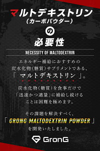 GronG(グロング)マルトデキストリンパウダー2kg国産