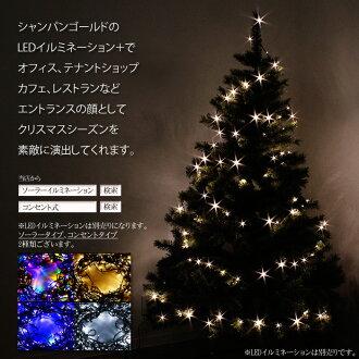 Nordic Christmas Trees