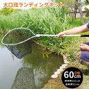ランディングネット 渓流 大型 ラバー タモ網 釣り ネット 網 折りたたみ 60cm アルミ 釣り タモ たも網 シーバス ラ…