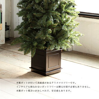 httpstshopr10sjpgroovy gbtcabinetgry_outst - Christmas Tree In A Pot
