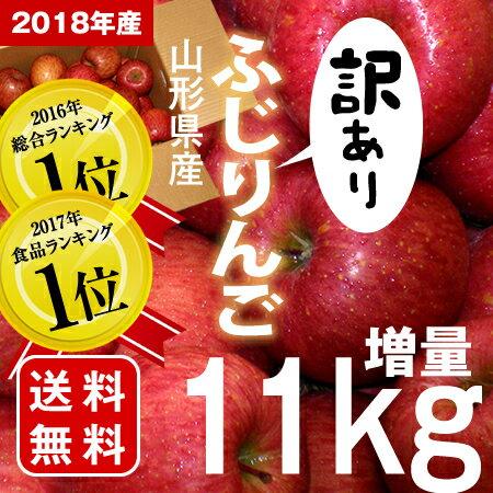≪総合1位3度入賞!毎年リンゴランキング1位!≫今年も増量11kg 山形産 訳あり ふじ りんご【送料無料】