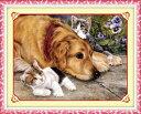 クロスステッチ刺繍キット 仲良し犬と猫 図柄印刷 A451 クロスステッチキット クロスステッチ ししゅう糸 刺繍糸 刺繍…