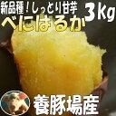 3箱まで送料同一!紅はるか【2kg増量】3kg→5kgさつまいも!べにはるか豚が育てたサツマイモ しっとり甘いさつま芋千葉県産
