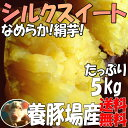 シルクスイート【2kg増量】5kg→7kg☆さつまいも!甘くなめらかな食感(絹芋)送料無料!甘みが強いサツマイモ(さつま芋)…