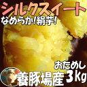 3箱まで送料同一!シルクスイート【2kg増量】3kg→5kg☆さつまいも!豚が育てたサツマイモ 甘くなめらかな食感なさつま…
