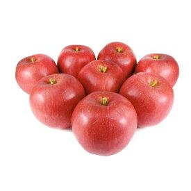 GuCra グクラ りんご 本物そっくりな模型 8個セット 食品サンプル 果物模型 (ふじEX)