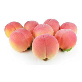 GuCra グクラ 桃 本物そっくりな模型 8個セット 食品サンプル 果物模型 軽量タイプ