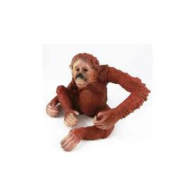 オランウータン サル 動物模型 動物フィギュア