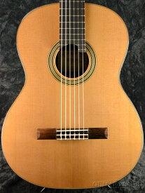 ASTURIAS DOUBLE TOP 杉/ローズウッド 新品[アストリアス][国産/日本製][Rosewood][Natural,ナチュラル][Acoustic Guitar,アコギ,アコースティックギター,Folk Guitar,フォークギター]