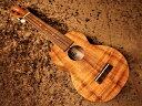 Kamaka HF-1 Soprano #201248 新品 ソプラノウクレレ[カマカ][Hawaiian Koa,ハワイアンコア][Soprano Ukulele]