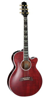Takamine DMP181AC WR [Brand new][Made in Japan][Electric Acoustic Guitar][Wine Red]