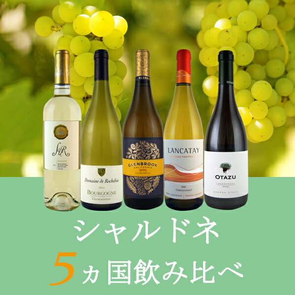 【送料無料】白ワイン、シャルドネ5種類飲み比べセット(米国、アルゼンチン、チリ、フランス、スペイン)