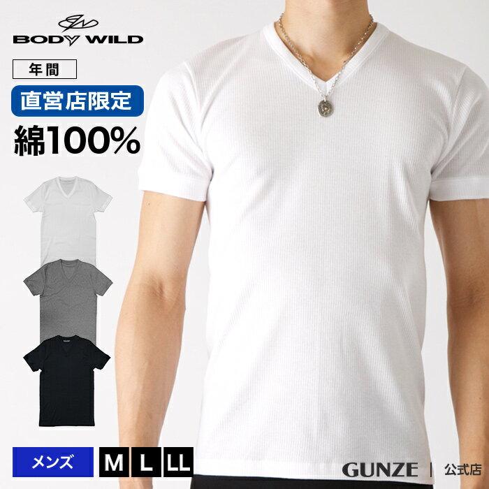 直営店限定 グンゼ ボディワイルド Vネック Tシャツ 綿100 BODY WILD GUNZE/VネックTシャツ(紳士)/年間シャツ/BWB315U