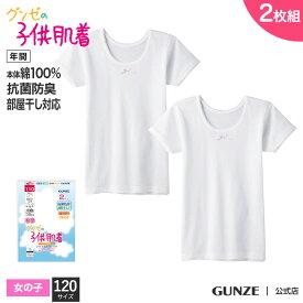 GUNZE(グンゼ)_子供/半袖シャツ【女児】【120cm】(2枚組) GUNZE16