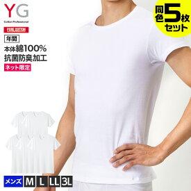 送料無料 まとめ買い割引 YG ワイジー ネット限定 ピュアコットン 綿100% クルーネックTシャツ 5枚セット メンズ 年間 GUNZE グンゼ インナー インナーシャツ アンダーシャツ 半袖 丸首 下着 肌着 綿100 コットン 白 福袋 M-3L SETM085 ST01M YV0013N GUNZE11