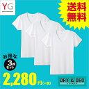 GUNZE(グンゼ)/YG/ネット限定お得セット YG D&D VネックTシャツ3枚セット(V首)(紳士)/SETM088