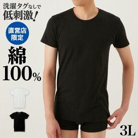 the GUNZE(ザグンゼ) クルーネック Tシャツ(丸首)(紳士)3Lサイズ 年間シャツ CK9013N 東北a 大きいサイズ 綿100% コットン シンプル 定番 無地 半袖 年間