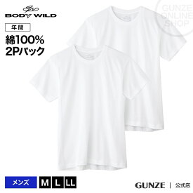 【2枚組】M-LLサイズ/BODY WILD(ボディワイルド)/GUNZE(グンゼ)/クルーネックTシャツ(丸首)(紳士)/年間シャツ/BW50132/ST01M