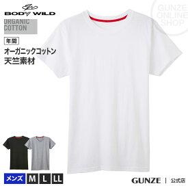 GUNZE グンゼ BODY WILD ボディワイルド クルーネックTシャツ メンズ BWL213A M〜LL オーガニックコットン 綿100% コットン 紳士 GUNZE11