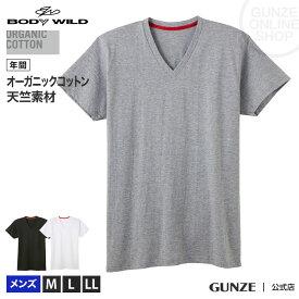 GUNZE(グンゼ)/BODY WILD(ボディワイルド)/VネックTシャツ(メンズ)/BWL215A/M〜LL オーガニックコットン 綿100% 紳士 コットン インナー