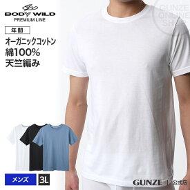 セール SALE アウトレット 3Lサイズ GUNZE(グンゼ)/BODY WILD(ボディワイルド)/【プレミアムライン】クルーネックTシャツ/BWN113P/3L/ 大きいサイズ GUNZE11