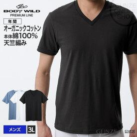 GUNZE(グンゼ)/BODY WILD(ボディワイルド)/【プレミアムライン】/VネックTシャツ/BWN115P/3L/年間