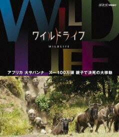 ワイルドライフ アフリカ大サバンナ ヌー100万頭 親子で決死の大移動 [Blu-ray]