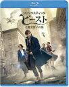[Blu-ray] ファンタスティック・ビーストと魔法使いの旅 ブルーレイ&DVDセット(初回限定生産)