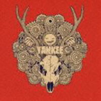 【CD】 YANKEE