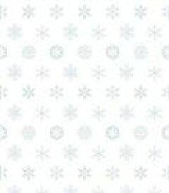 CHEMISTRY / 白の吐息 [CD]