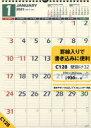 NOLTYカレンダー壁掛け32(2021年版1月始まり)