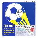 【ネコポス不可】学校色紙 サッカー AR0819069【A】