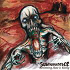 subhumanrace / Screaming,Hate is Rising [CD]