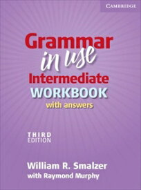 Grammar in Use Intermediate 3rd Edition Workbook with Answers