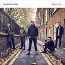 輸入盤 NEW STREET ADVENTURE / STUBBORN SONS (LTD) [LP]