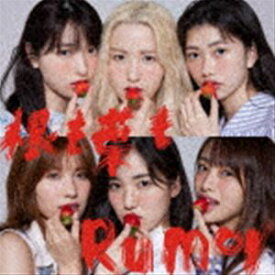 AKB48 / 根も葉もRumor(通常盤/Type B/CD+DVD) [CD]